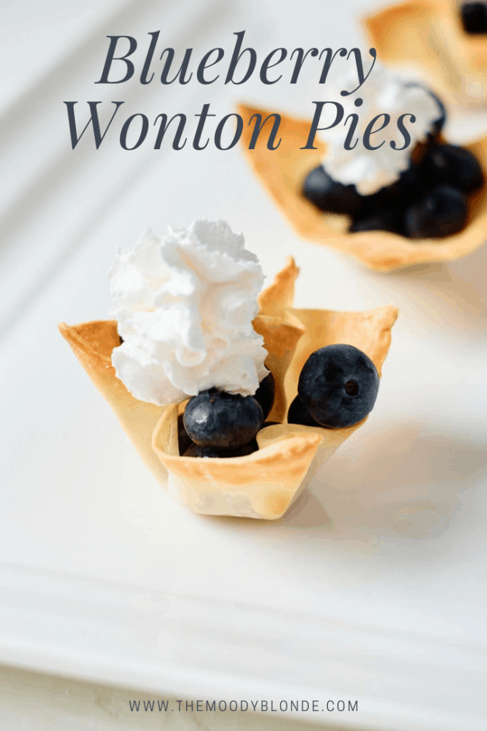 Easy Blueberry Wonton Pies Pinterest