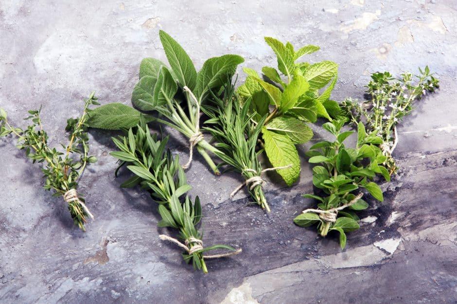 garden fresh herbs on a gray board